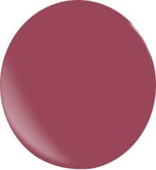 Farbgel N095/ 22 ml