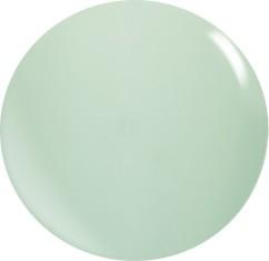 Farbgel N043/ 22 ml