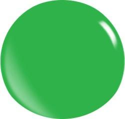 Color Acryl Powder N146/56 gr.
