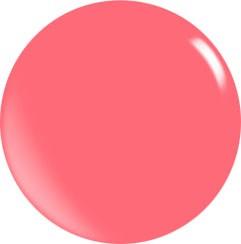 Farbgel N144/ 22 ml
