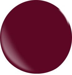 Farbgel N009/22ml