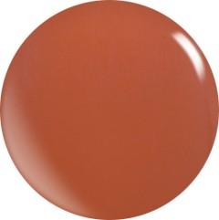 Farbgel N064/ 22 ml