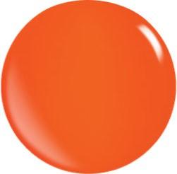 Color Acryl Powder N020/56 gr.