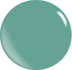 Color Acryl Powder N132/56 gr.
