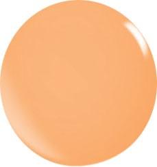 Color Acryl Powder N107/56 gr.